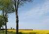 Un moulin beauceron