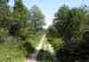 Chemin près du Lizieux