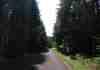 Une route sur la commune  du Chambon sur Lignon