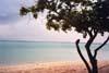 A l'île Maurice, une plage du Morne....