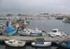 Le port de l'herbaudière, nord ouest