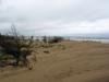 Les dunes sud de l'île d'Oléron