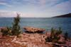 Le bénitier de l'île Rodrigues....